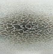 Texture Progression